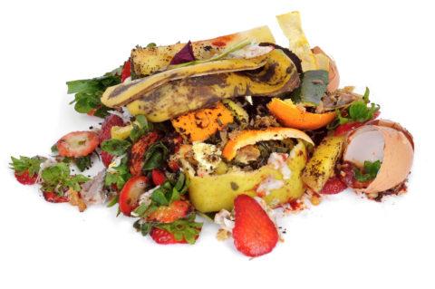 December Update on ReFED: Rethink Food Waste