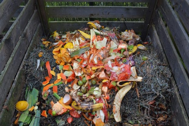 Organics Recycling Committee call – Nov. 15
